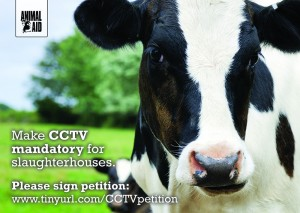 CCTV for all slaughterhouses