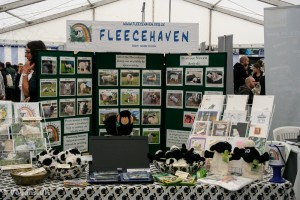 Fleecehaven rescue sheep and give them a loving home
