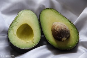 Plant fats are healthier than animal fats